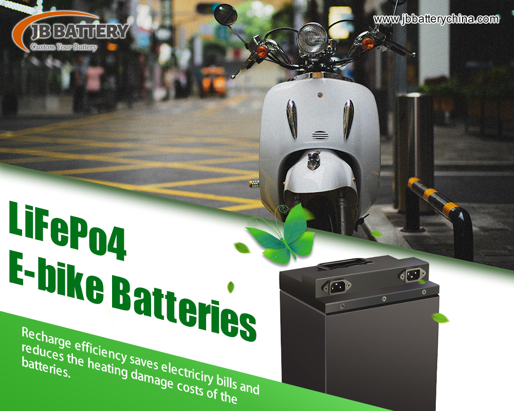 Can 48V 100AH Custom LiFePO4 Battery Pack Work In Electric Vehicles?